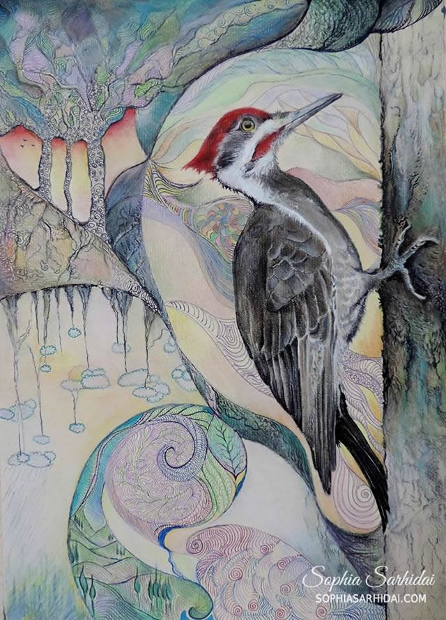 Sophia Sarhidai: Bird pastel drawing