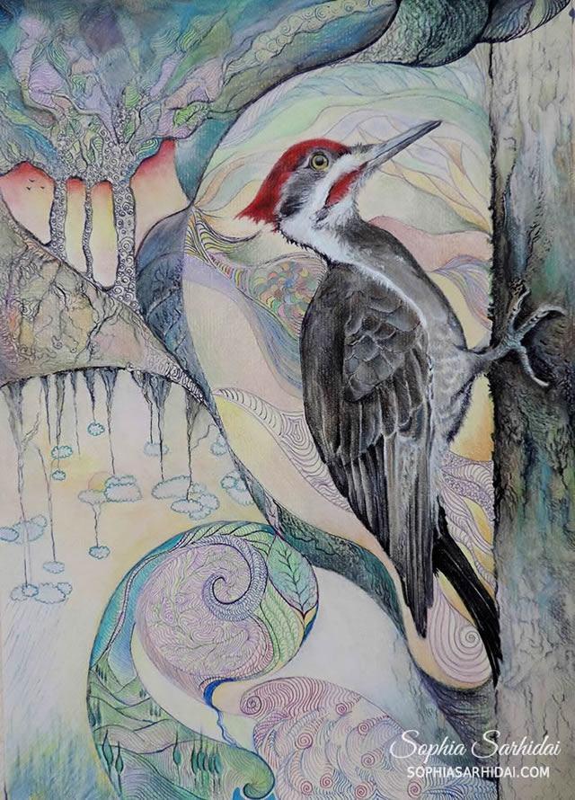Sophia Sarhidai: Bird pastel drawing