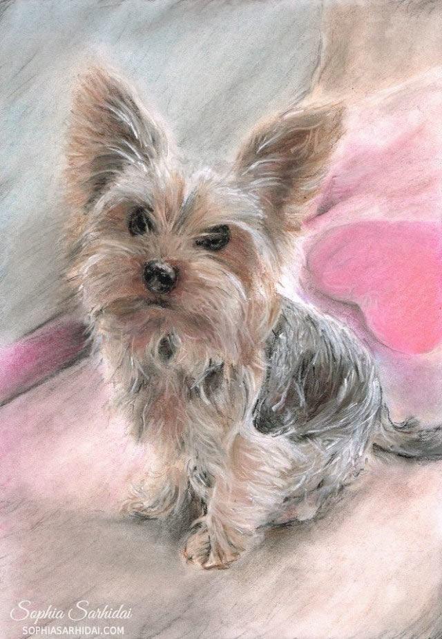 Sophia Sarhidai: Doggy pastel drawing